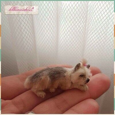 OOAK Hand Sculpted Realistic Miniature Dog Pet Animal Dollhouse 1:12th Scale Cat