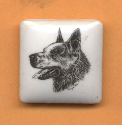 Australian Cattle Dog ceramic  pin art by Monique Akar