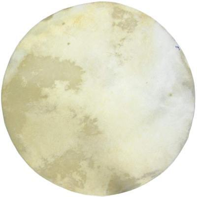 "16"" White Calf Skin / Head / Vellum for Banjos or Drums. From Hobgoblin Music"