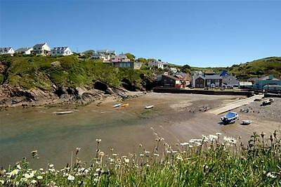 LATE DEAL Holiday Cottage in Little Haven pets welcome 27th - 29th Jan 2 Nights