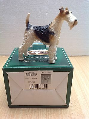 BEST OF BREED WIRE HAIRED FOXTERRIER(new)