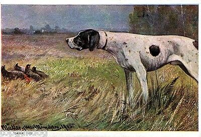 Rare Dutch English Pointer Dog w Red Grouse Lge Chromo Advert Card c1920s