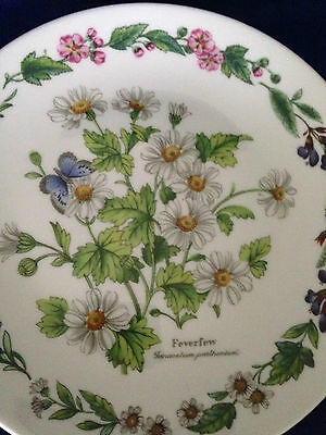 "ROYAL WORCESTER HERBS 'feverfew' DECORATIVE 7.5"" PLATE by Bradex Ltd Ed PERFECT"
