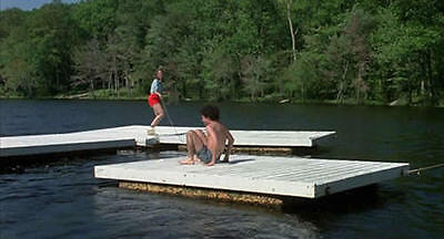 Friday the 13th, Part 1 - Framed piece of Swimming Dock from Crystal Lake