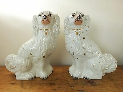 """Antique Staffordshire pottery fireside dogs spaniels wally large 13"""" Victorian"""