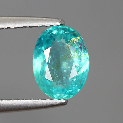1.475 Ct 100% Natural Very Rare Paraiba Blue Color Apatite !!! Rare To Find !!!
