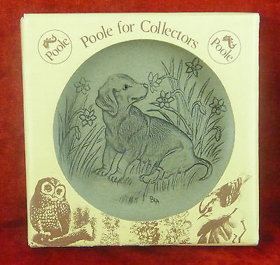 Poole Pottery For Collectors – Hand Finished Dog Plate  In Original Box