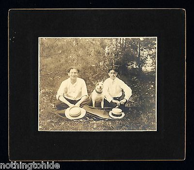 American Staffordshire Terrier Dog Poses With Friends - Circa 1900 Cabinet Photo