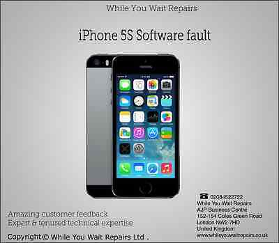 Repair Replacement Service for iPhone  5s Software Faults