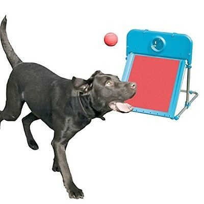 Dog Pet Flyball AgilityTraining Play  Toy