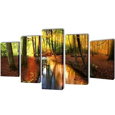 New Set of 5 Panel Canvas Wall Art Print Painting Picture Set Forest 100x50cm