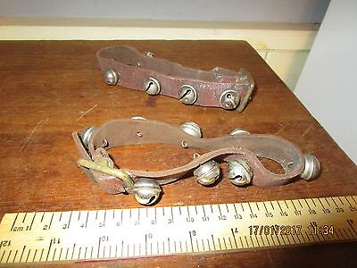 Antique / Vintage Leather Dog Collars with Brass buckles and Rumble bells