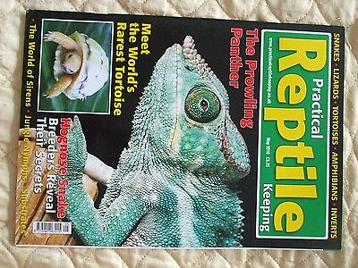 Practical Reptile Magazine May 2010