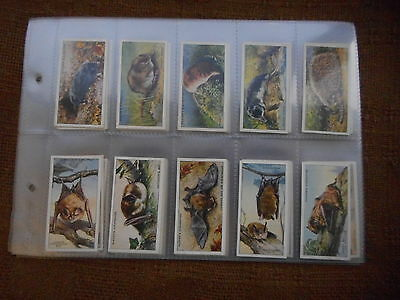 Full Set Cigarette Cards - Players Animals Of The Countryside