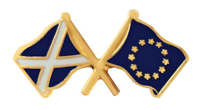 SNP Scottish National Party IN Europe Scotland Pin Badge - T736