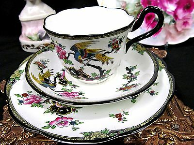 Collingwoods Tea Cup And Saucer Trio Exotic Bird Floral Teacup Pattern Painted
