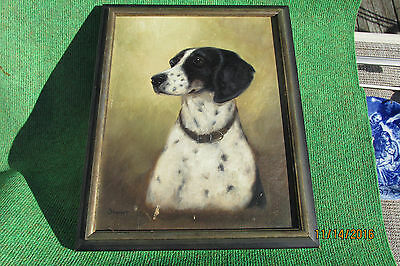 Portrait Of A Pointer Oil Signed  M.a.thoms 1965