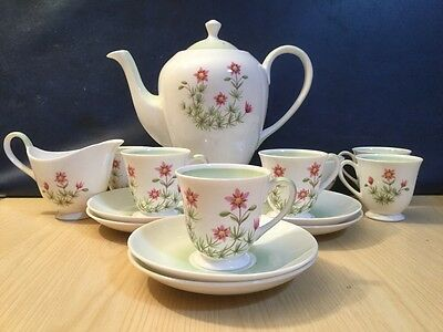 Tuscan Meadowsweet 15 Piece Coffee Set Bone China VGC Vintage