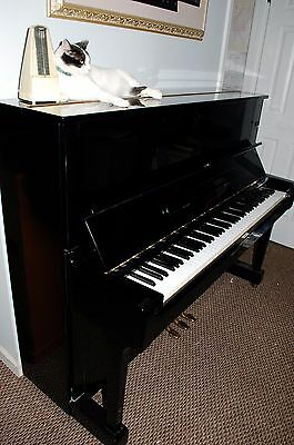 Best price on a Yamaha U1 pro upright  piano & free continental US  delivery ***