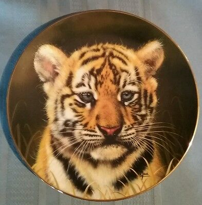 """Decorative Plate """"Tiger Cub"""" by Qua - Princeton Gallery - Cubs of the Big Cats"""
