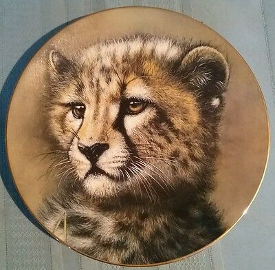 """Decorative Plate """"Cheetah Cub"""" by Qua - Princeton Gallery - Cubs of the Big Cats"""