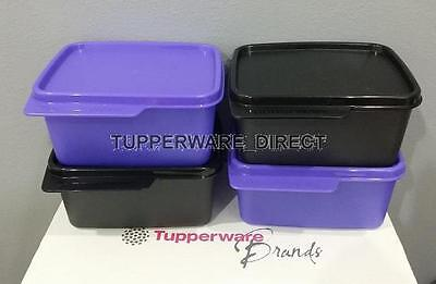 Tupperware Keep Tab Small - Containers - 500ML - Set of 4 - Black & Violet