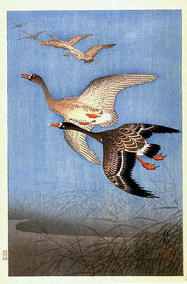 Flying Geese Japanese Reproduction Woodblock Print By Ohara Shoson