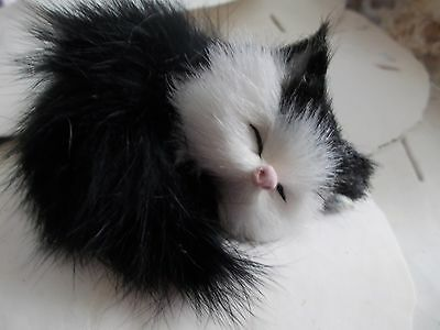 Tiny Kitty Cat Sleeping Meow Voice Fluffy Taxidermy Realistic Black & White