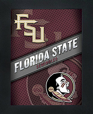 3D Art Officially NCAA Licensed Picture Florida State Seminoles