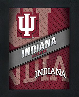 3D Art Officially NCAA Licensed Picture Indiana Hoosiers