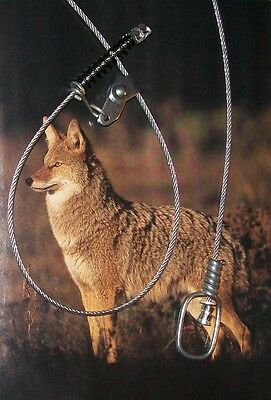 "SNARE Coyote Bobcat Fox   Canadian Pro 3/32"" (7x7) with Swivel & 50# Kill Spring"