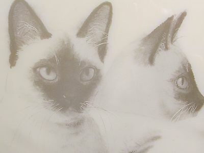 Siamese Cats Picture Wall Hanging Tile D Johnston Hays Kimberly Enterprise Kitty