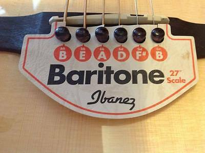 Ibanez Baritone guitar and case - near new! Still has tags...