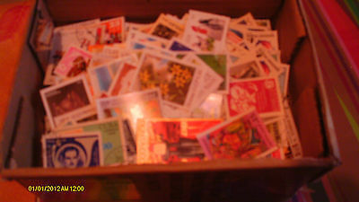 Large stamp collection Box of world stamps never hinged thousands of stamps