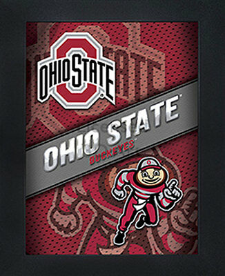 3D Art Officially NCAA Licensed Picture Ohio State Buckeyes