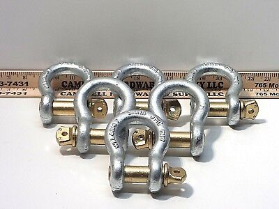 """3/4"""" Screw Pin Anchor Shackle 4-3/4 Ton Clevis Bow Lifting Pulling Rigging (6ea)"""