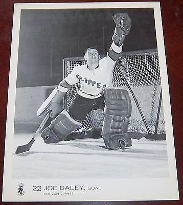 Baltimore Clippers Joe Daley 1969  from the Woody Ryan Collection
