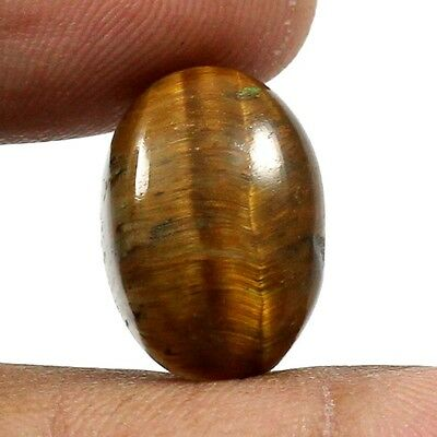 12.90 cts 100% Natural Untreated Tiger Eye Gemstone Oval Shape Loose Cabochon