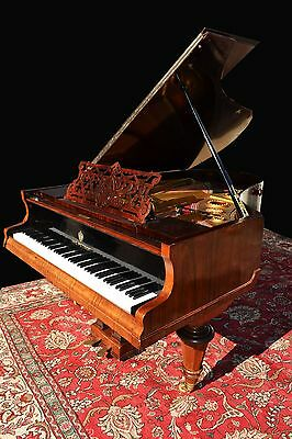 Exceptional Art case Petrof  grand  piano  , free nationwide   shipping***