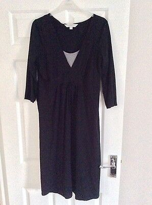 next maternity work dresses size 12