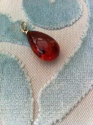 Ladies amber Pendant With Insect