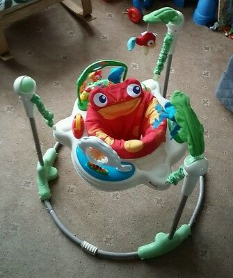 Fisher Price Rainforest Jumperoo with instructions, good working condition