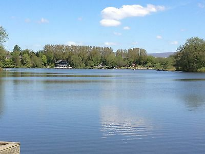 WATERSIDE HOLIDAY ROMANTIC PRIVATE LODGE 4*PET FRIENDLY with private boat & bike