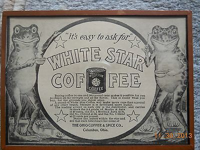 1901 Original Print Advertising Framed Frog White Star Coffee Magazine Cat Resq