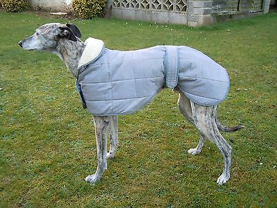 Cosipet Stylish Showerproof Padded Dog Coat Greyhound/sighthound In Cool Grey