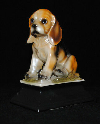 Vintage Realistic Sitting Beagle Puppy Dog Very Glossy Porcelain Fiurine