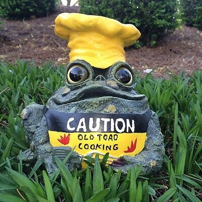 Toad Hollow 8-1/2 in. Caution-Old Toad Cooking Garden Statue