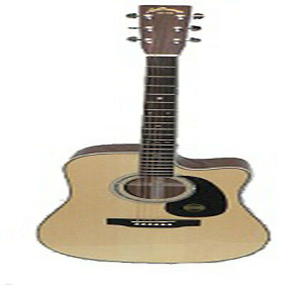 Aria Acoustic/Electric Dreadnought
