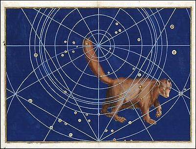 1603 antique CELESTIAL MAP constellation zodiac URSA MINOR Bayer SMALLER BEAR 10