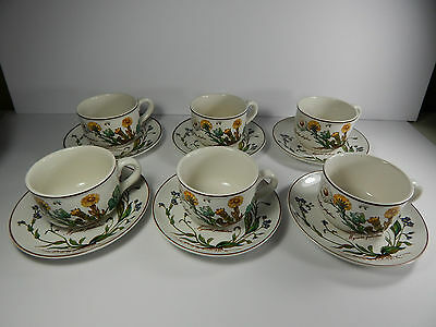 Villeroy Boch Botanica Cups and Saucers Set of 6